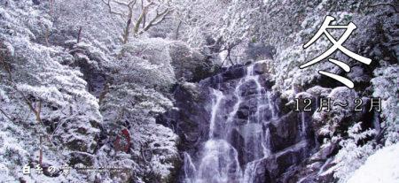 冬(12月~2月)